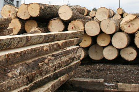 Obrobka drewna